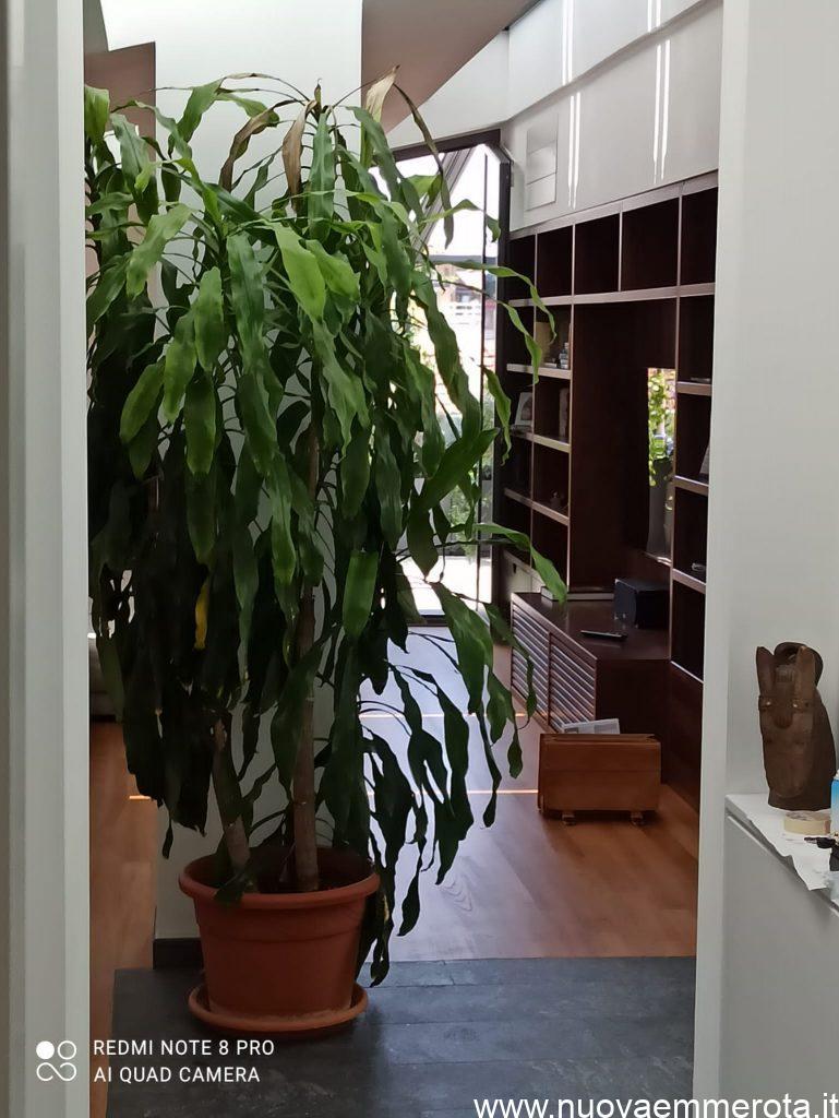 Libreria di design su misura in una residenza in Milano.